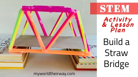 Stem Straw Bridge Blog Title
