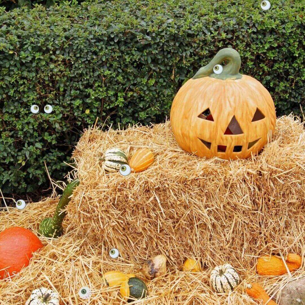 Halloween Game - Eye Hunt